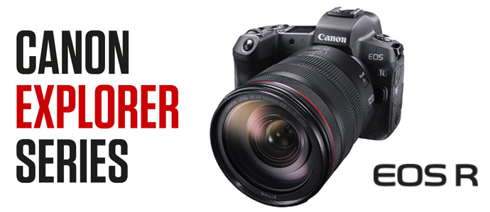 Canon-Banner_2